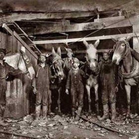 Hinny drivers in the Brow Mine, Virginia, September 1908.